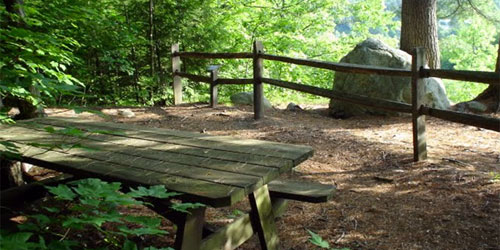 Fort-dummer-state-park--picnic-table-credit-vtstateparks