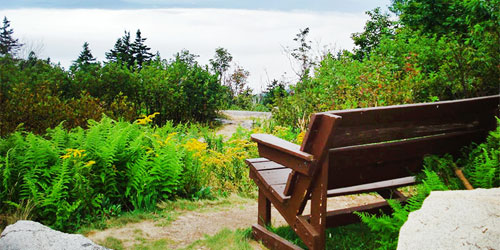 Mount-ascutney-state-park-bench-view-credit-vtstateparks