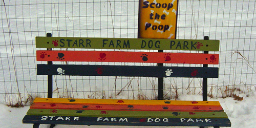 starr farm dog park in burlington vt